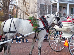 Santa's sleigh goes by on Main St. in the Christmas parade in old town St. Charles